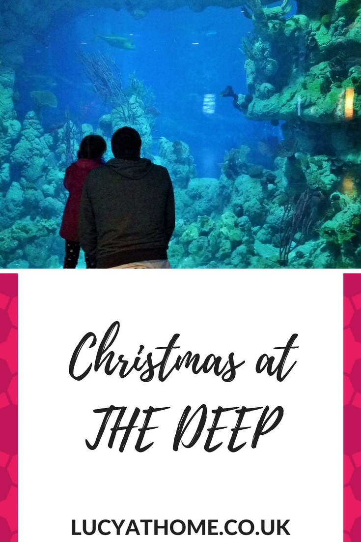 Pinterest Christmas At The Deep