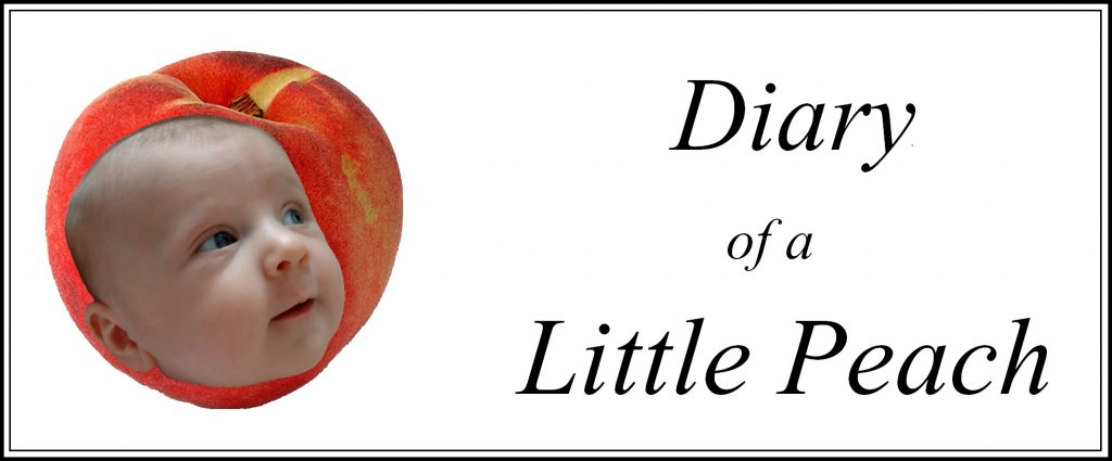 bloggers bluff 19 diary of a little peach logo