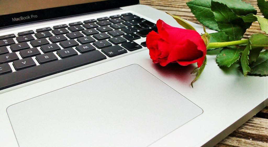 No follow link laptop rose