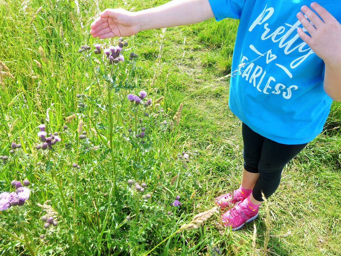 Lucy At Home T-Shirt Pretty Fearless Sapphire Stood Near Thistles Parenting Blog