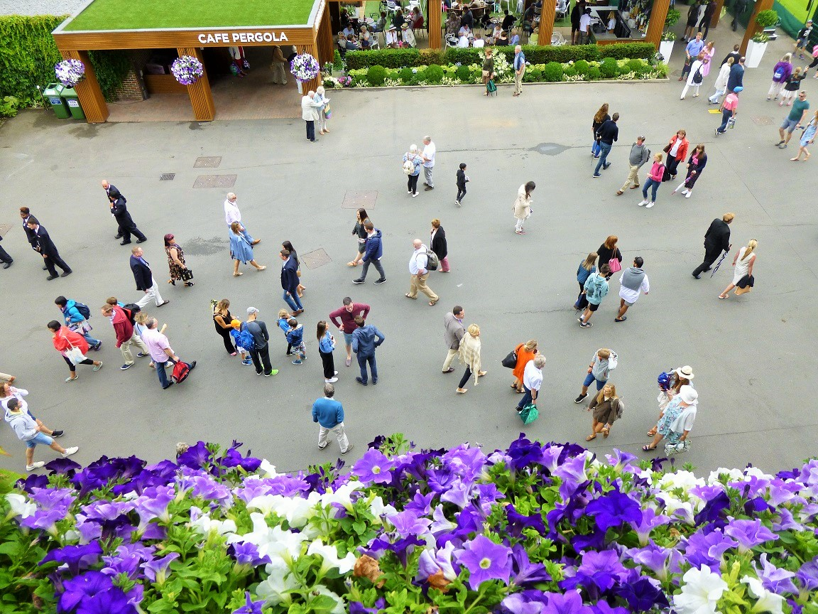 Wimbledon crowds from above