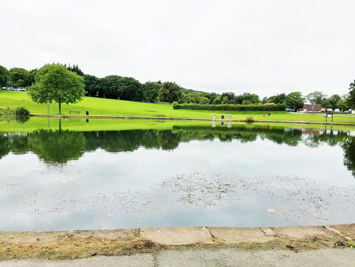North Wales Eirias Park Duck Pond