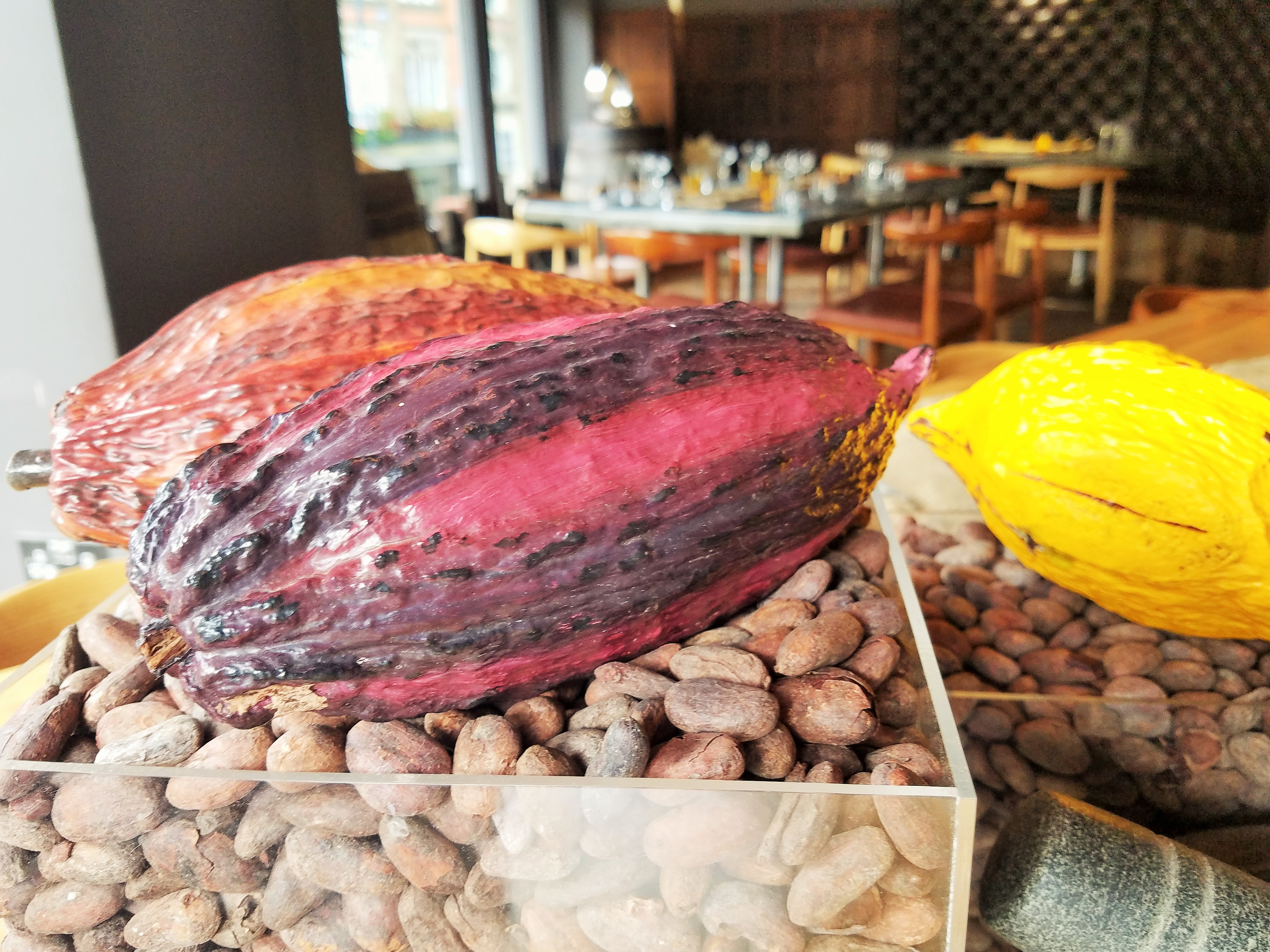 Hotel Chocolat Colourful cocoa pods