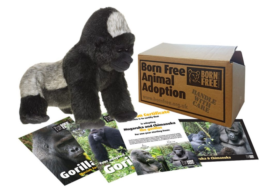 Creative Kids Gift Guide Adopt An Animal Endangered Species