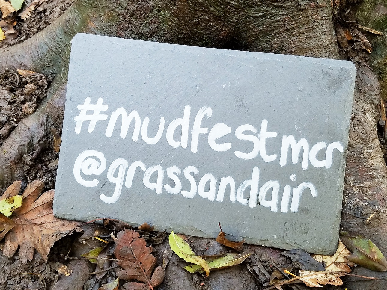 Grass & Air Mud Fest sign