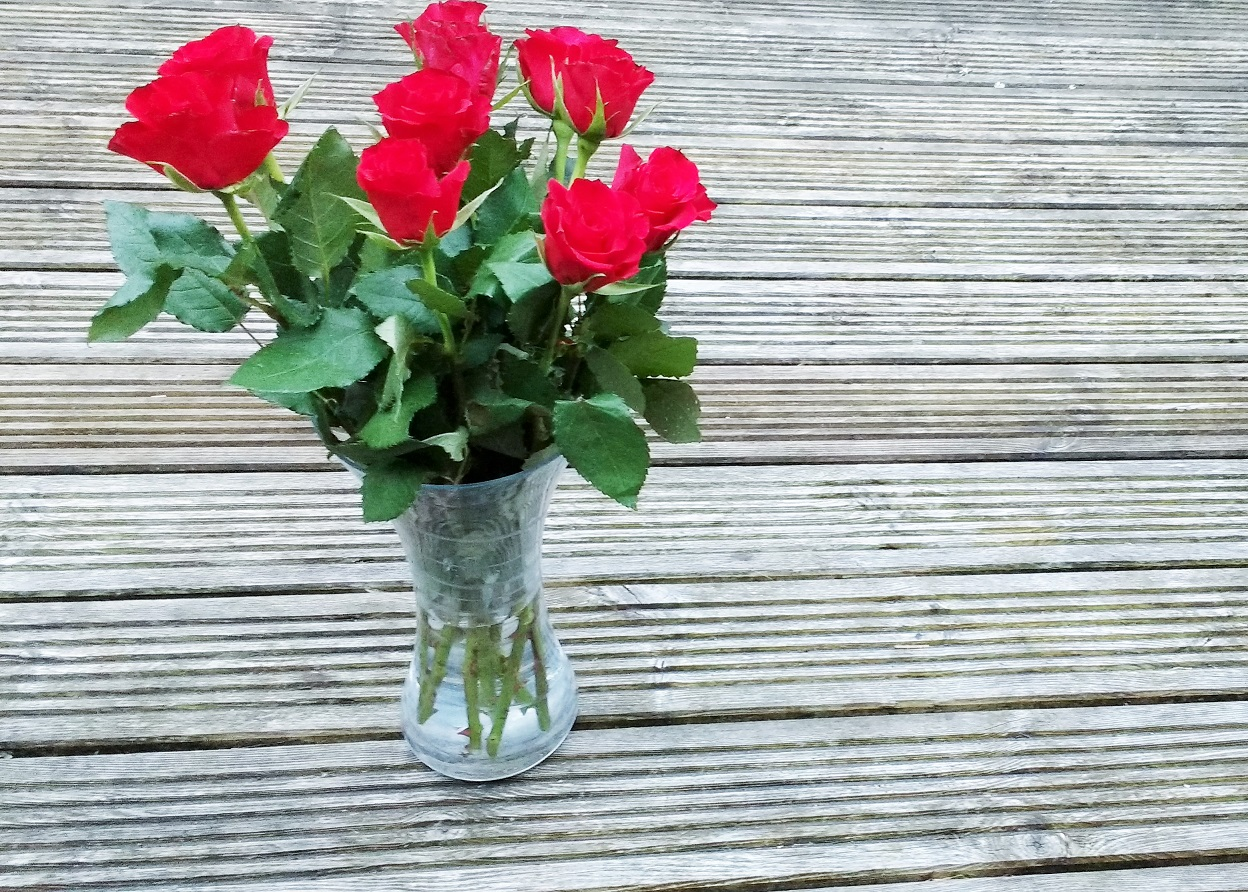 why it's important to discipline even as a gentle parent - red roses in a vase