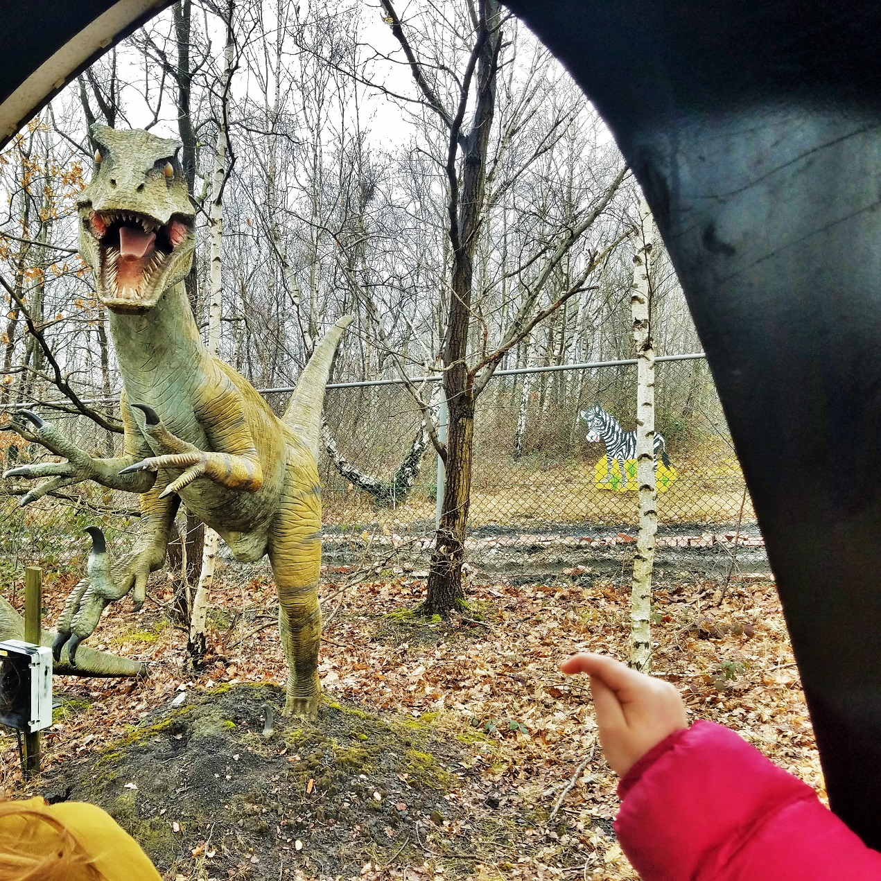 diggerland in the rain - dinosaur safari experience yorkshire