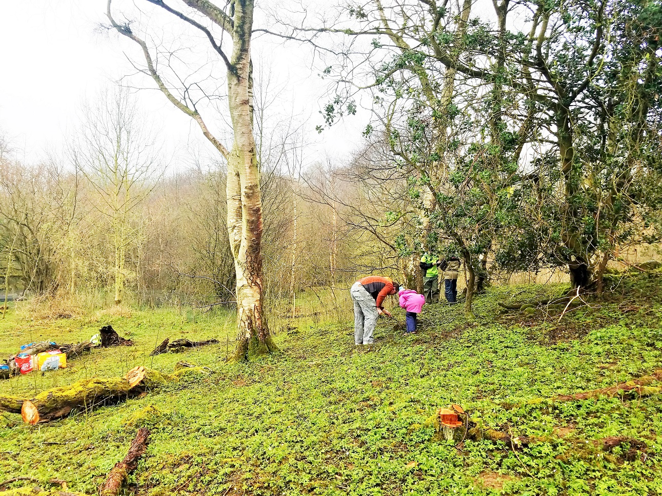 Tracking skills - Forest school at Yorkshire Dales National Park Centre in Aysgarth