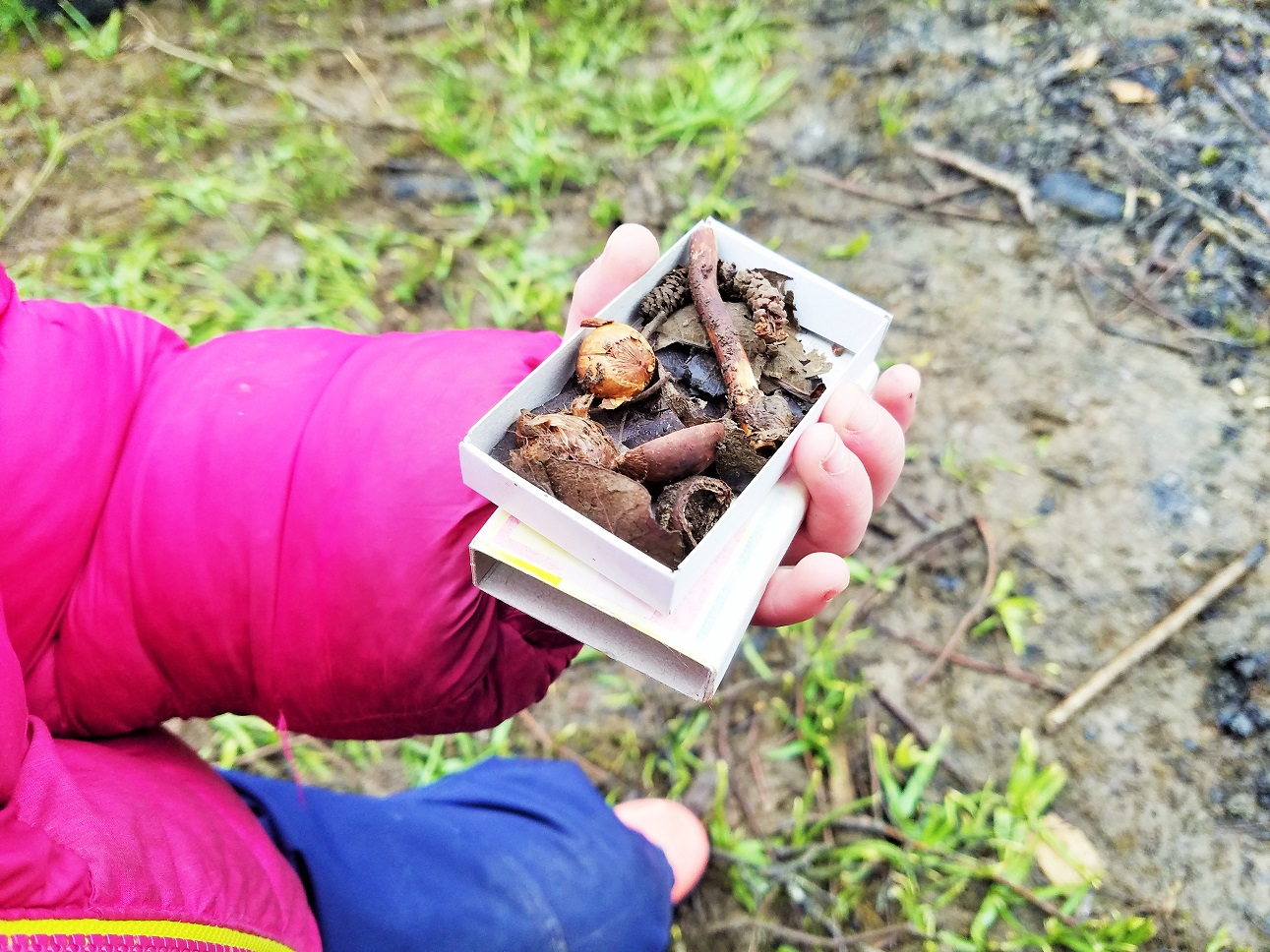 Forest school in the Yorkshire Dales - child holding matchbox of outdoor treasures