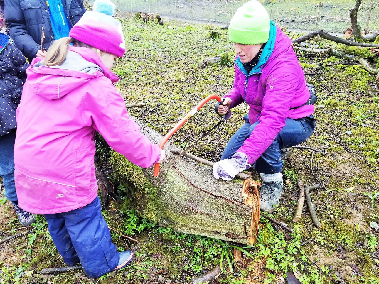 Child using bow saw to saw wood and make a kazoo - Forest School class in Yorkshire Dales