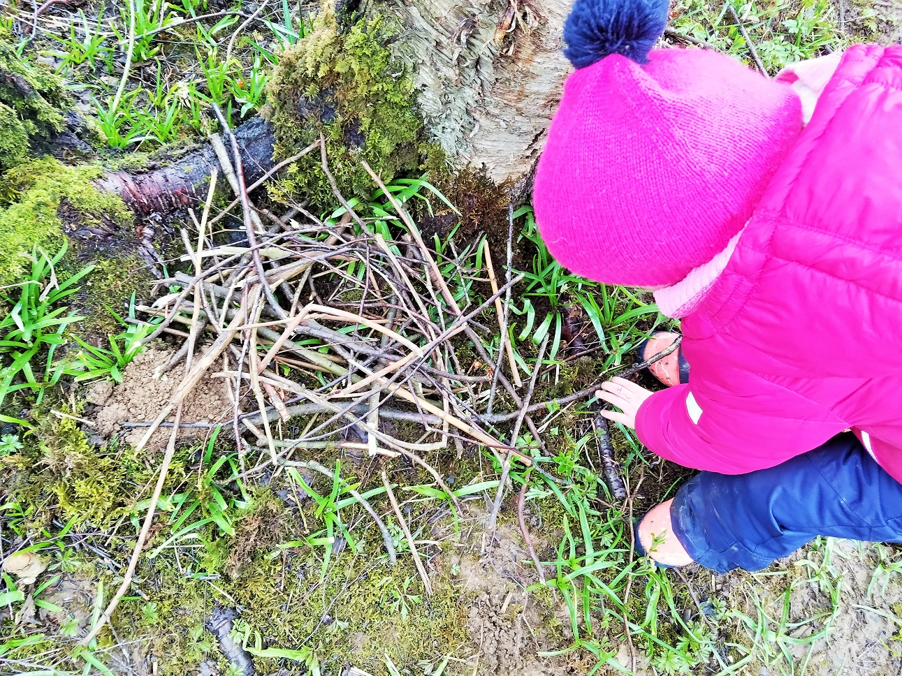 Building a nest of sticks - Forest School at the Yorkshire Dales National Park in Freeholders Wood