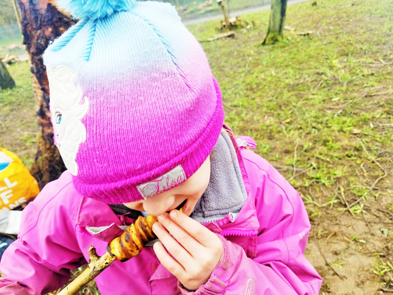 Eating croissant from a whittled stick - Yorkshire Dales Forest School