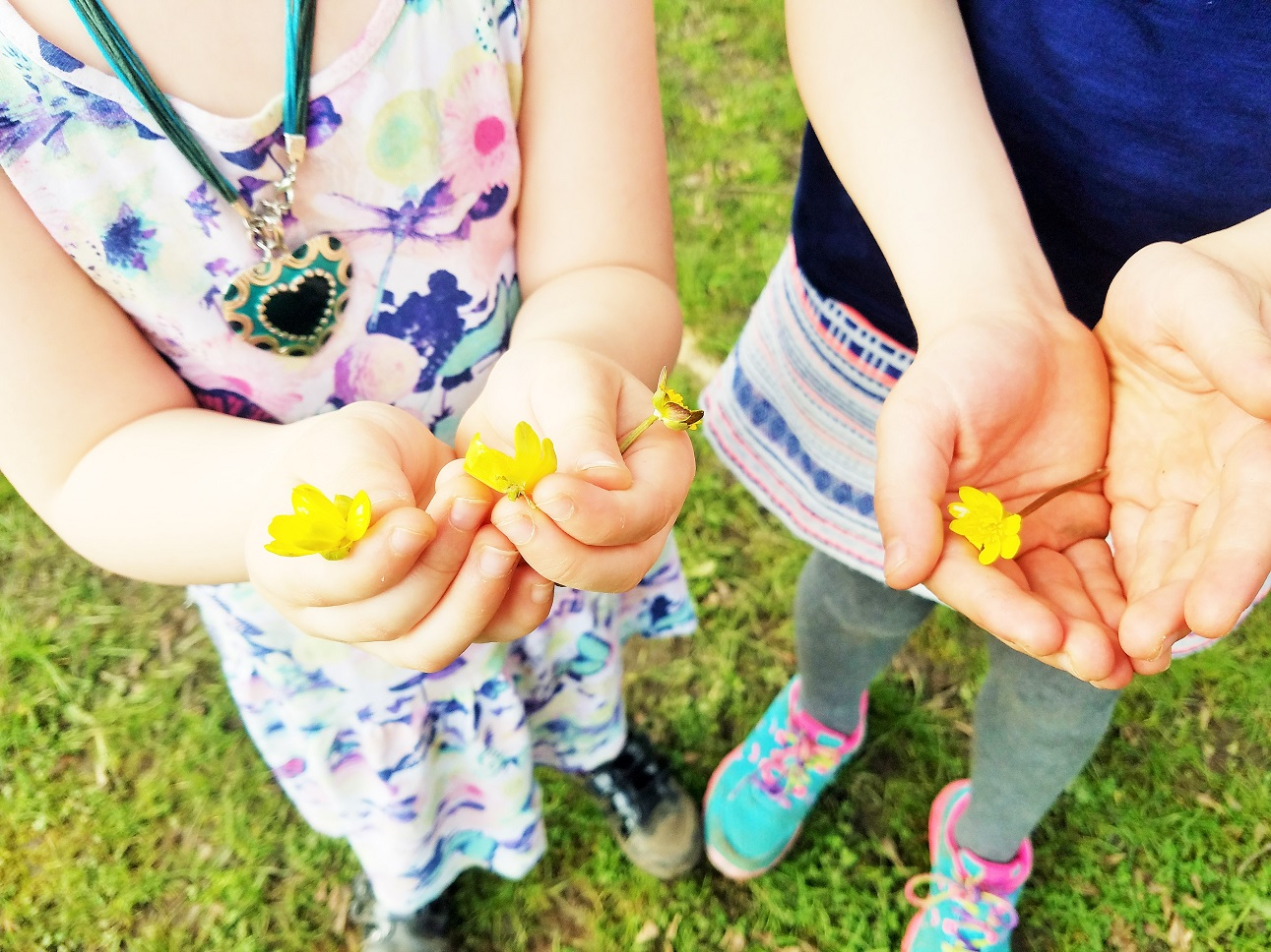 Future Teenage Kids - small children holding out buttercups flowers - make your choice