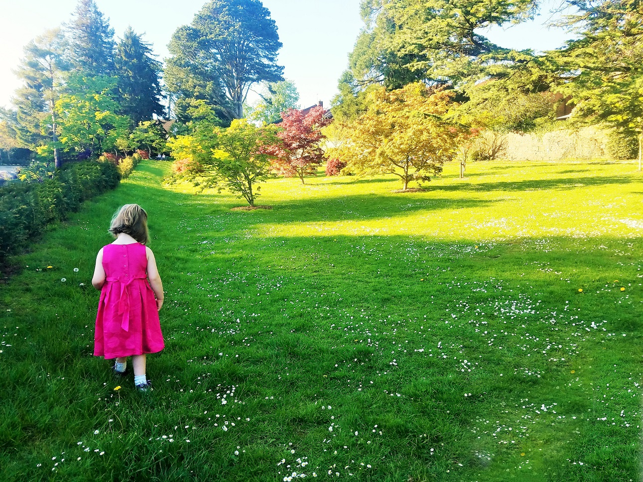 Empathy for your child is important - child wearing pink dress walking through field