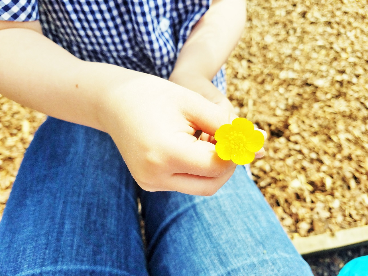 what is gentle parenting - child holding a buttercup flower to mother