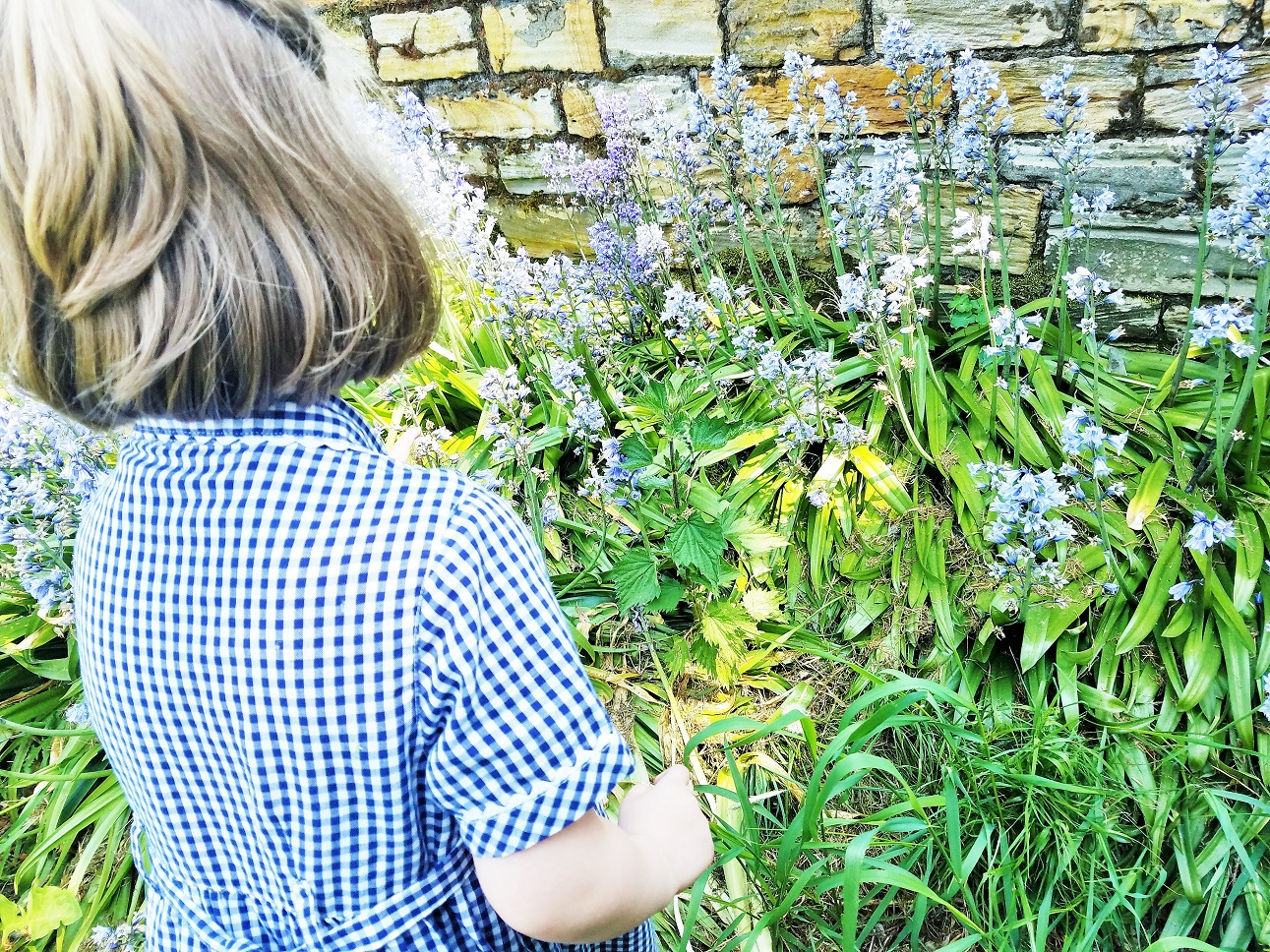 The art of listening is so important for parents - child in blue dress with some blue flowers bluebells