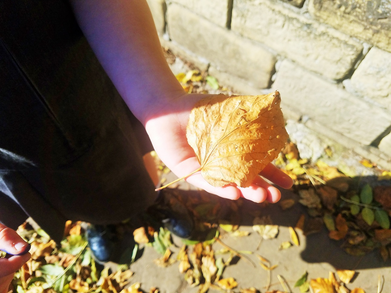 Self compassion and self love are essential when we've messed up parenting - child holding an autumn leaf