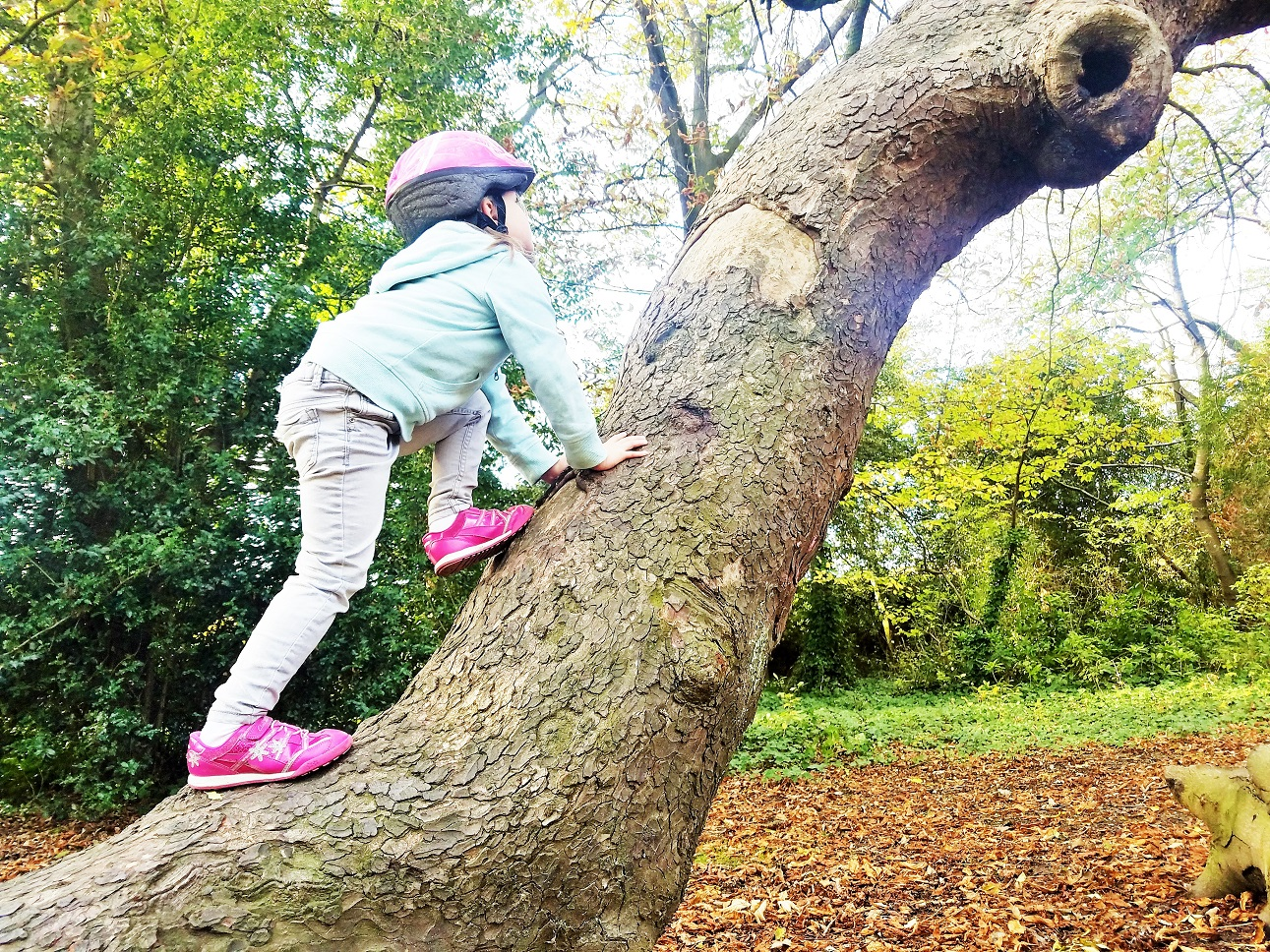 7 Ways You Should Be Treating Children Like Adults - child climbing tree