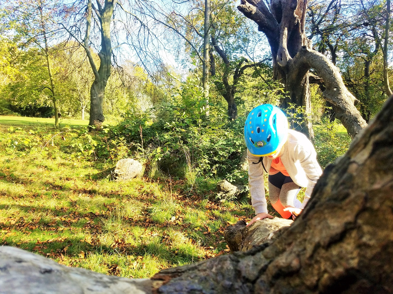 Treat children like adults by being respectful - child crawling along a tree branch