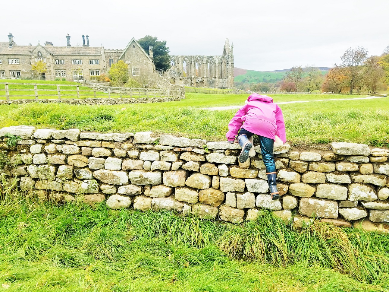 why does gentle parenting not allow rewards and praise - child climbing wall at bolton abbey