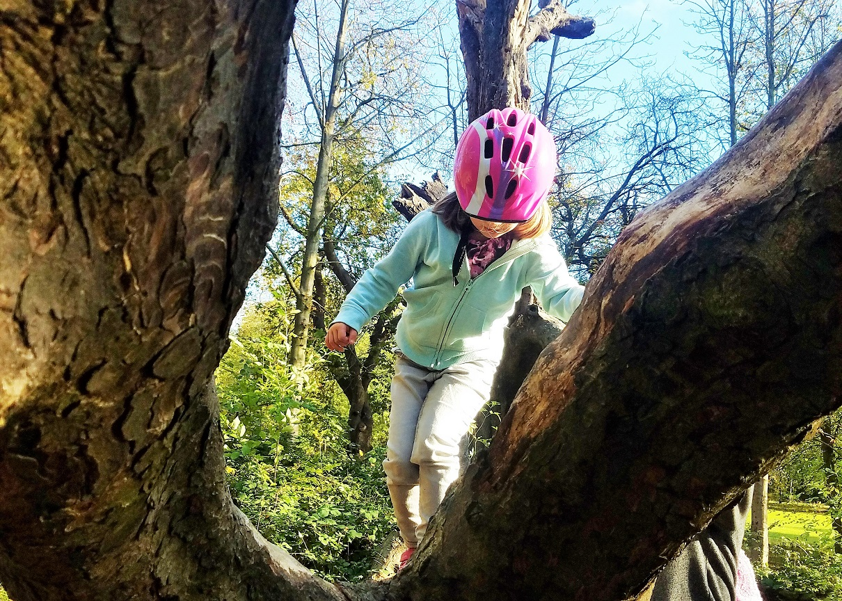 Why you need to treat your children like adults - tree climbing young child