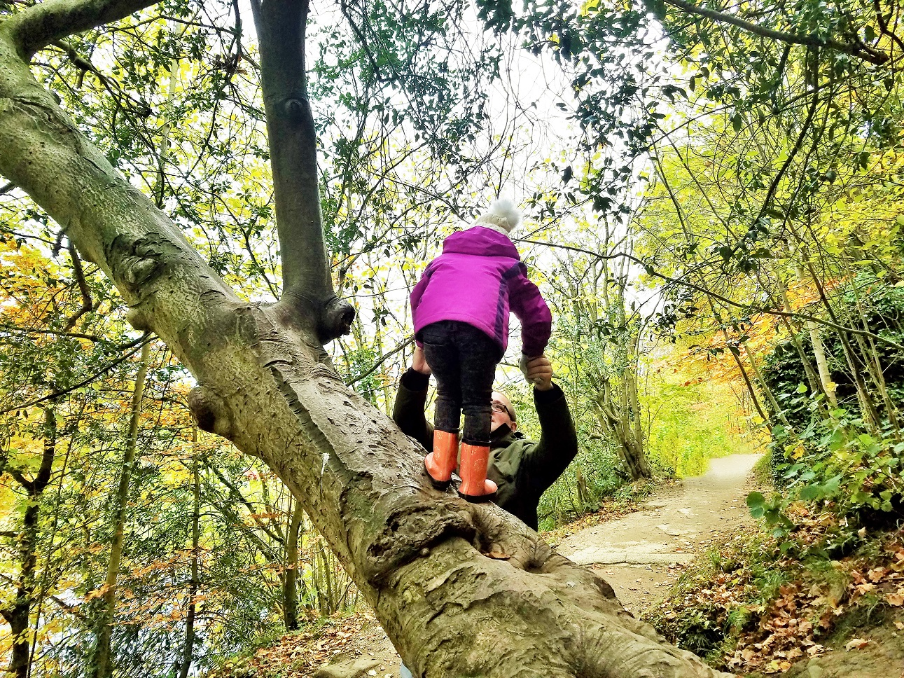 How to prepare little kids for starting school - dad helping child climb a tree - blogcrush week 95