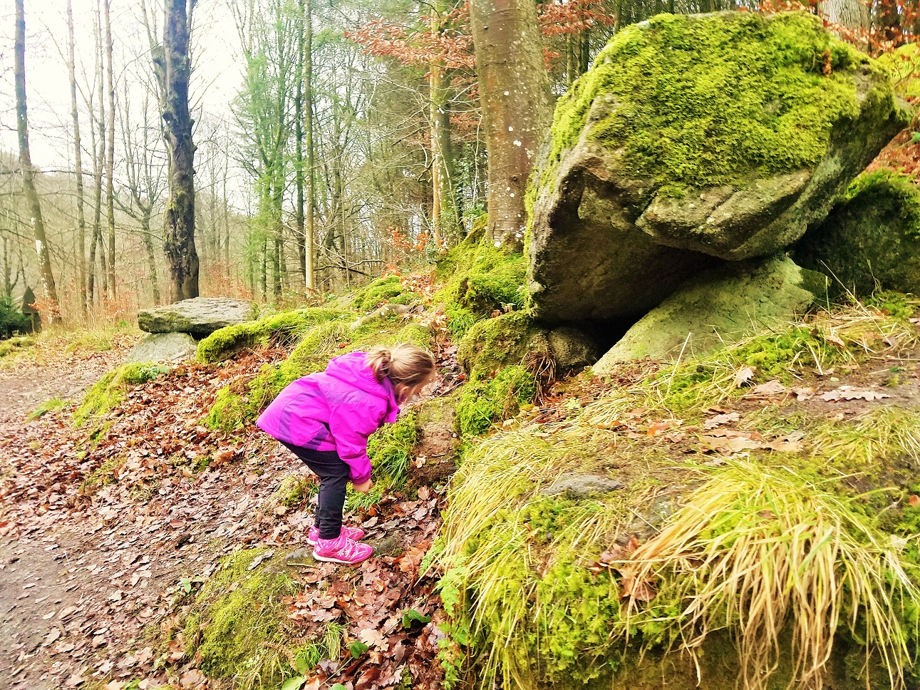 how to defend gentle parenting to your interfering mother in law - child looking underneath some moss covered rocks