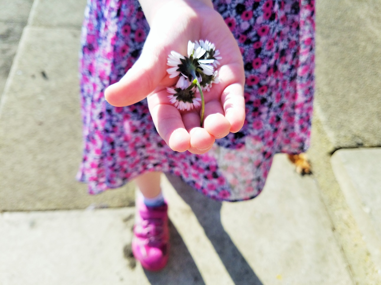 spur of the moment games for bored children child holding daisies